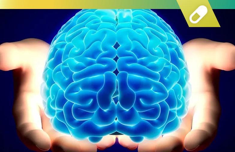 Top 10 des meilleurs nootropiques de 2020: pilules intelligentes d'amélioration cognitive