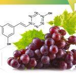 Top 10 des meilleurs suppléments de resvératrol en 2020