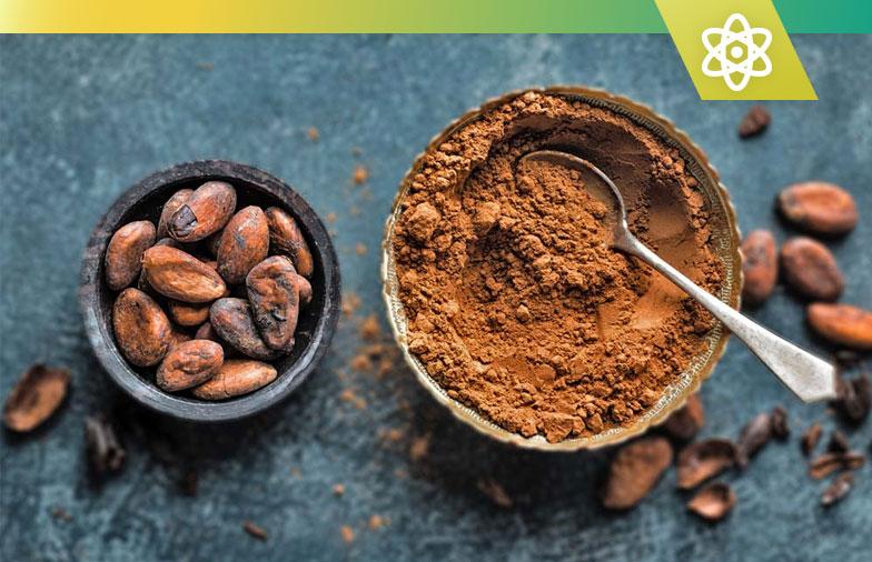 Top 5 des meilleurs suppléments de cacao flavanol en 2020