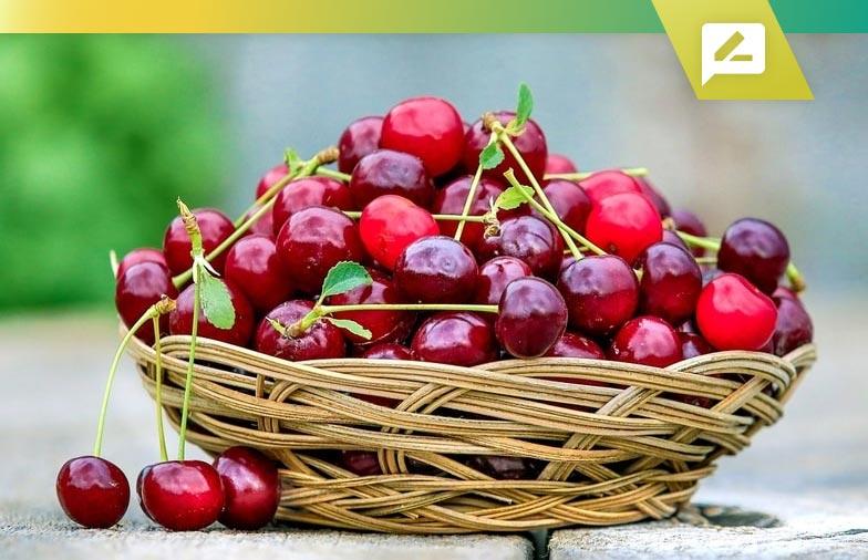 Top 5 des suppléments de goutte en 2020 avec 26 meilleurs traitements alimentaires naturels
